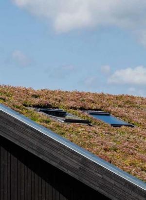 חלונות גג בבנייה ירוקה